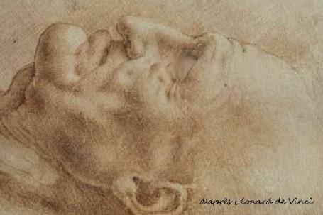 profil de vieil homme, de Vinci 2